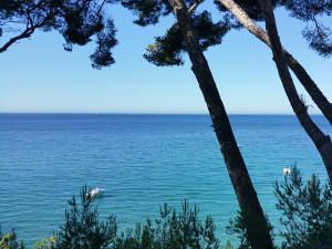 La Méditerranée sur le sentier du littoral au départ de La Madrague St-Cyr-sur-Mer