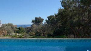 baignade avec l'île Verte en fond de tableau